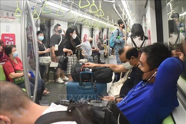 新冠肺炎疫情:从6月14日新加坡逐渐放宽社交距离措施 hinh anh 1