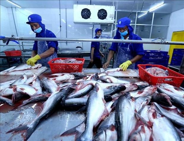 印尼力争2021年水产品出口额达60.5亿美元 hinh anh 1