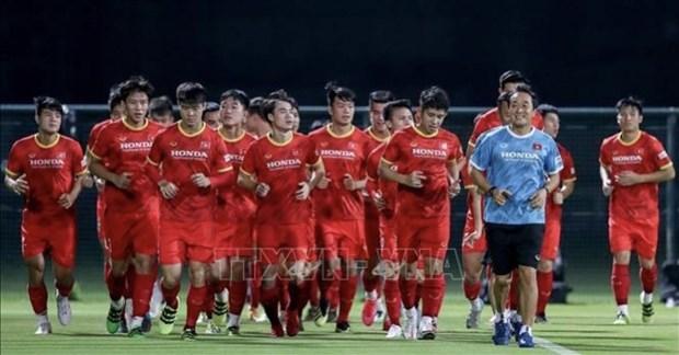 阿联酋队主教练:阿联酋队与越南队较量将是一场精彩的比赛 hinh anh 1