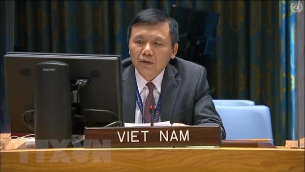 越南与联合国安理会:越南呼吁马里加强民族和谐和推进过渡进程 hinh anh 1