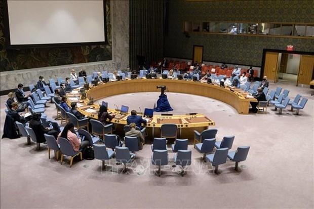 联合国安理会就苏丹、索马里和戈兰高地形势召开会议 hinh anh 1