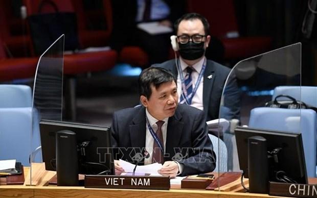 越南与联合国安理会:越南敦促各方接受联合国提出的也门和平倡议 hinh anh 1