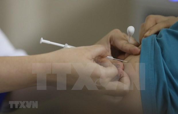 政府为胡志明市进口新冠疫苗创造便利条件 hinh anh 1