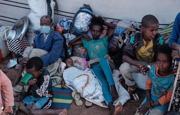 越南呼吁国际社会采取行动避免埃塞俄比亚陷入饥饿 hinh anh 1
