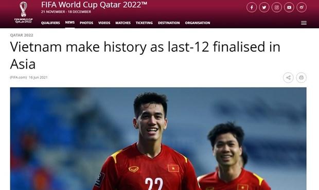 国际足联对越南国足的历史性胜利印象深刻 hinh anh 1