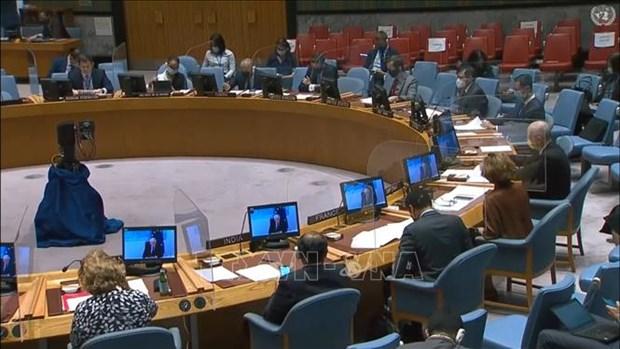 联合国安理会讨论新冠肺炎疫情对反恐造成的影响 hinh anh 1