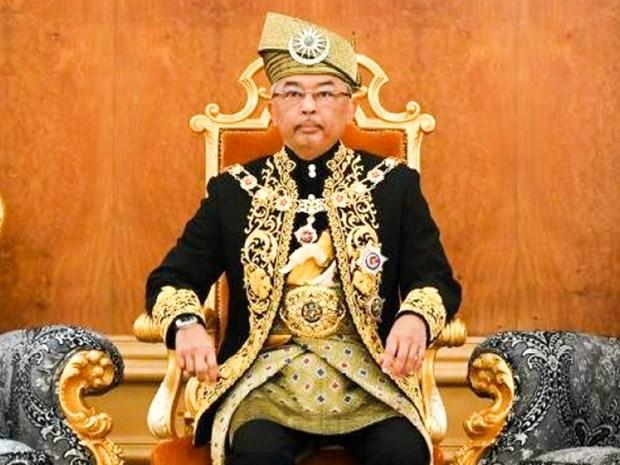 马来西亚最高元首就国会活动事宜召开会议 hinh anh 1
