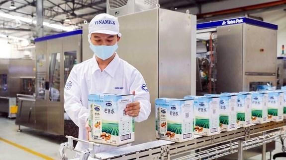 越南乳制品股份公司继续稳居《越南最佳上市公司50强》的前十大企业行列 hinh anh 1