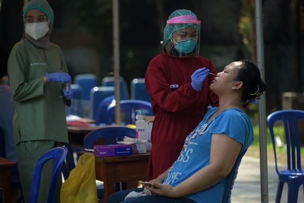 东南亚新冠肺炎疫情新动态 hinh anh 2