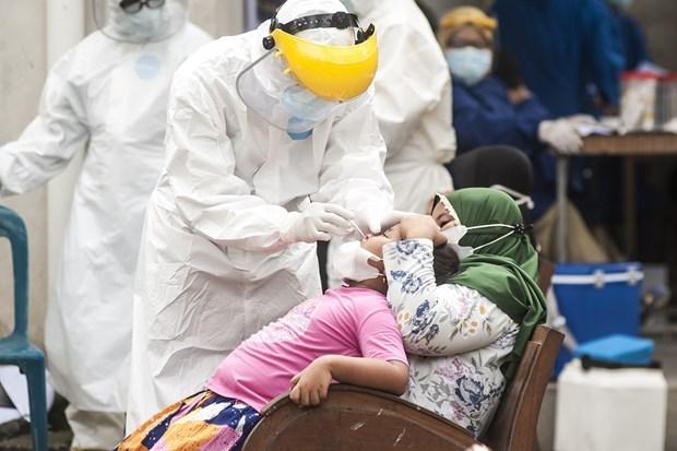 新冠肺炎疫情:印尼单日新增确诊病例创2021年1月以来新高 hinh anh 1