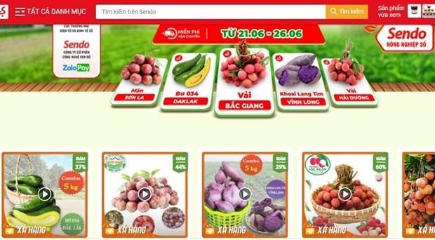 越南多省农产品走上Sendo电商平台 hinh anh 1