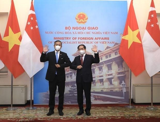 越南与新加坡面向达成有关数字经济的双边协议 hinh anh 1