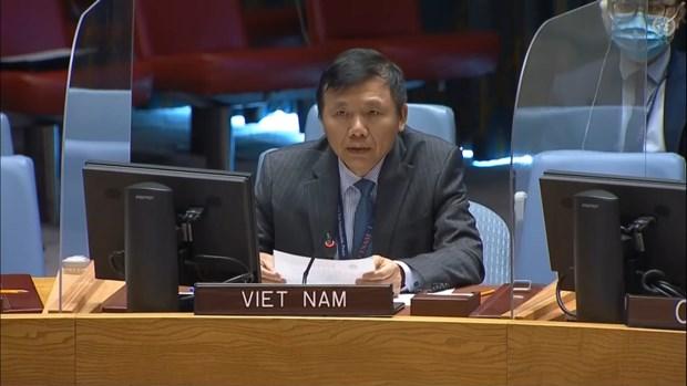 越南与联合国安理会:越南继续为联合国南苏丹特派团的活动作出积极贡献 hinh anh 2