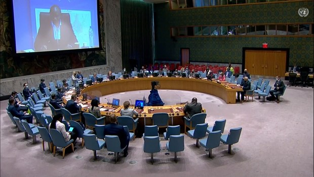 越南与联合国安理会:越南继续为联合国南苏丹特派团的活动作出积极贡献 hinh anh 1
