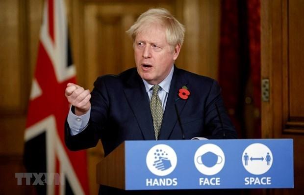 日本对英国加入CPTPP谈判作出反应 hinh anh 1