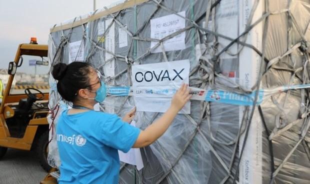 新冠肺炎疫情:UNICEF将尽最大努力协助越南获取新冠疫苗 hinh anh 1