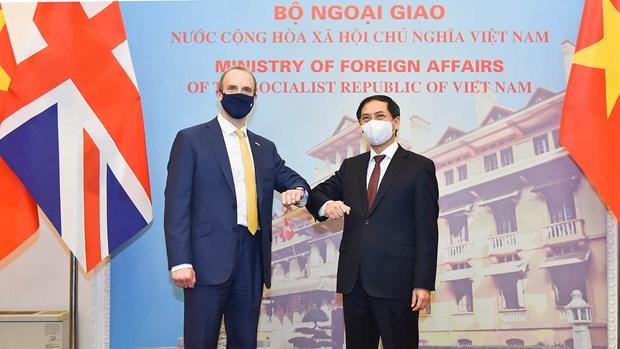 越南外交部长裴青山与英国外交大臣多米尼克·拉布举行会谈 hinh anh 2