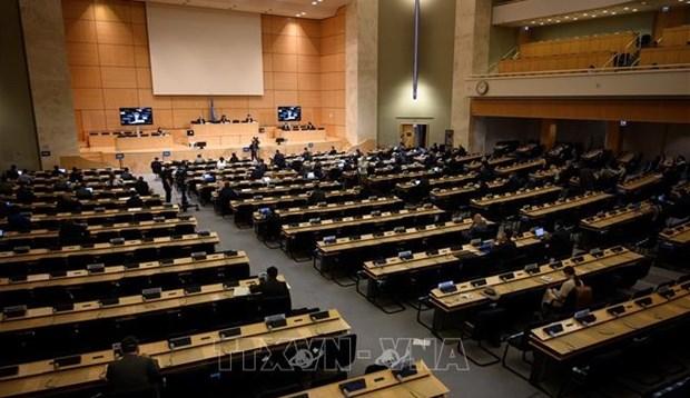 联合国人权理事会召开第47届会议 hinh anh 1