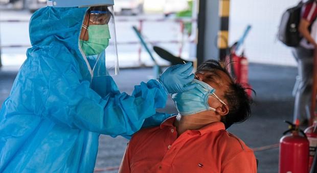 6月23日中午越南新增80例新冠肺炎确诊病例 hinh anh 1