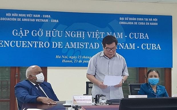 越南-古巴友好见面会以视频方式举行 hinh anh 1