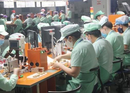 岘港各工业区吸引11个新投资项目 hinh anh 1
