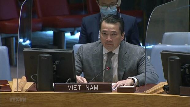 越南与联合国安理会:越南敦促努力解决中非共和国和叙利亚的人道主义和安全挑战 hinh anh 1