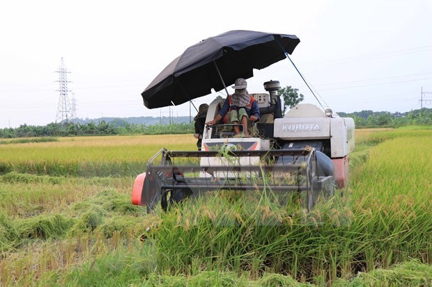 外媒:越南提高农业机械化水平 hinh anh 1