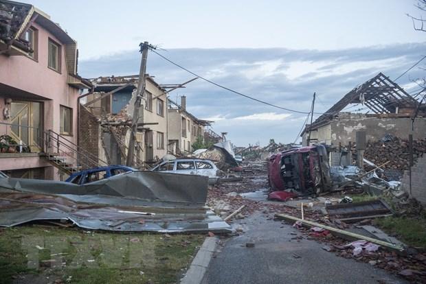 旅居捷克越南人携手努力克服自然灾害的后果 hinh anh 1
