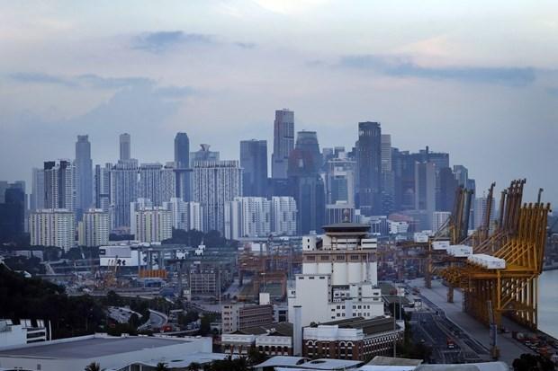 新冠疫情期间新加坡新注册公司数量逆势增长 hinh anh 1