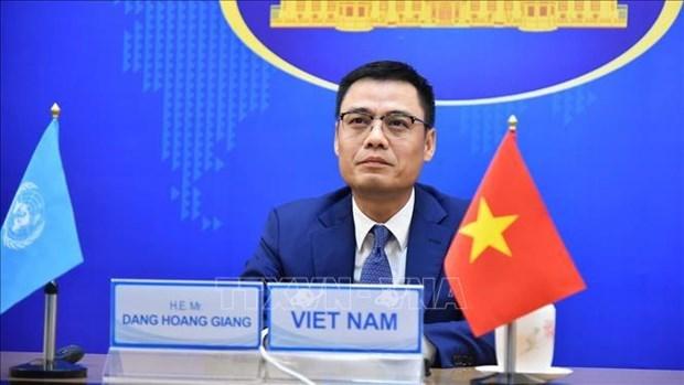 越南与联合国安理会:结束战争是保护儿童的前提 hinh anh 1