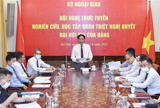 旅居海外越南人研究、学习、贯彻落实和宣传越共十三大决议 hinh anh 1