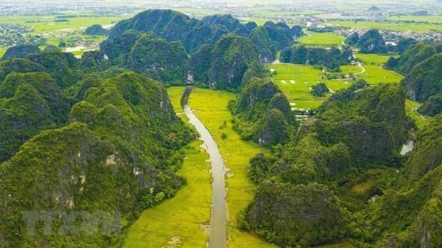传递绿色环保理念 共建美丽家园 hinh anh 2