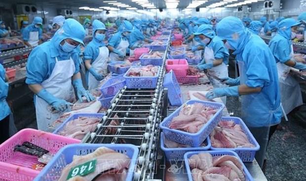 美国公布针对越南巴沙鱼的反倾销复审终裁的结果 hinh anh 1
