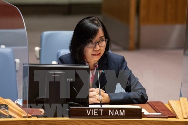 越南与联合国安理会:越南支持促进重新执行《联合全面行动计划》的外交努力 hinh anh 1