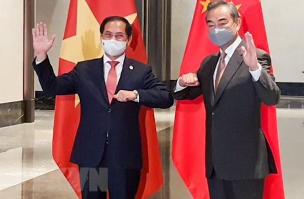 越南驻中国大使范星梅:受新冠肺炎疫情影响 越中关系依然保持良好的发展势头 hinh anh 3