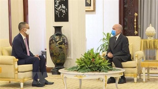 柬埔寨国王会见越南驻柬大使武光明 hinh anh 1