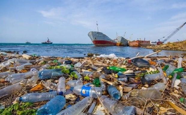 东盟国家代表参加减少亚太地区塑料污染创新挑战赛 hinh anh 1