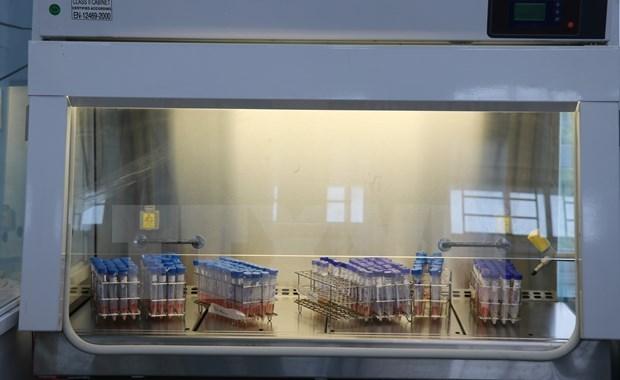7月7日上午越南报告新增277例确诊病例和3例死亡病例 hinh anh 1
