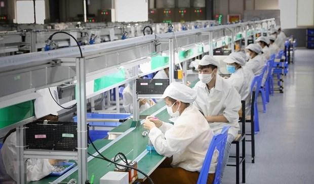 自7 月 8 日起雇员和雇主可获得总额达26 万亿越南盾的救助计划 hinh anh 2