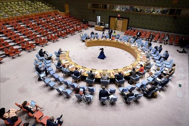越南与联合国安理会:越南敦促解决西非和萨赫勒地区的安全和人道主义挑战 hinh anh 1