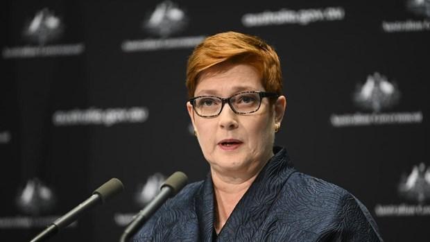 澳大利亚呼吁在东海问题上遵守国际法 hinh anh 2