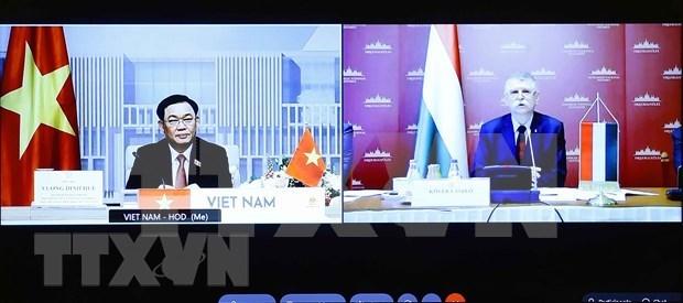 越南国会主席王廷惠与匈牙利国会主席克韦尔•拉斯洛进行线上会谈 hinh anh 1