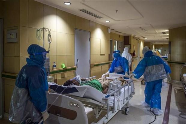 7月12日部分东南亚国家的新冠肺炎疫情形势 hinh anh 2