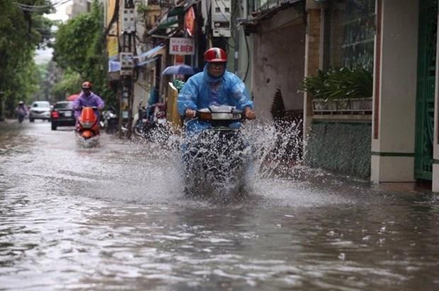 比利时协助河内提升城市内涝预警能力 hinh anh 1