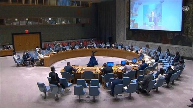 越南与安理会:越南建议哥伦比亚各方保护妇女和儿童 hinh anh 1