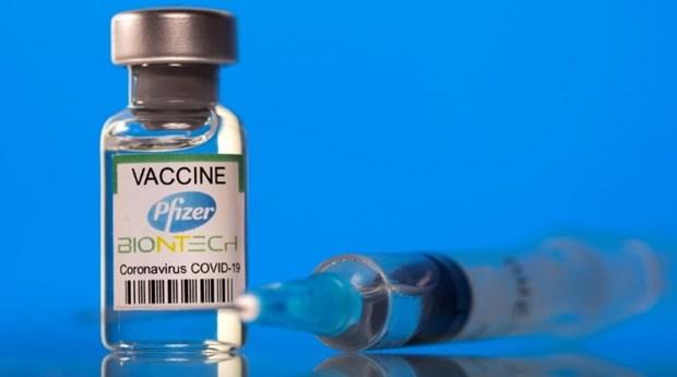 美国辉瑞承诺继续向越南提供2000万剂新冠疫苗 为12-18岁儿童接种 hinh anh 1