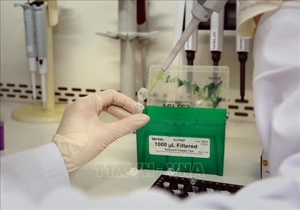 黑森州和梅塞尔集团向越南捐赠16万套检测试剂盒 hinh anh 1
