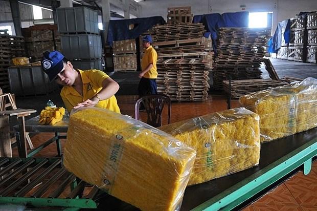 2021年前5月越南橡胶对印度出口额实现翻倍增长 hinh anh 1
