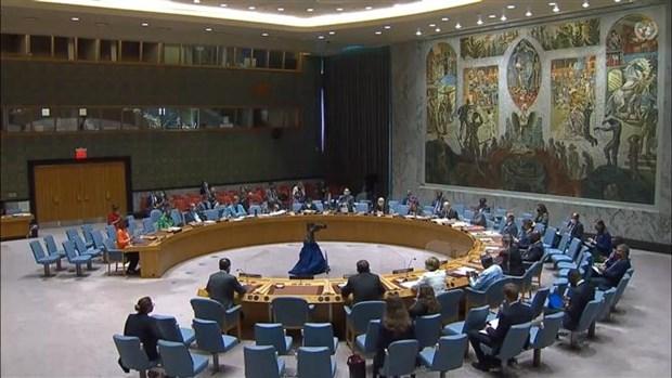 越南与联合国安理会:越南积极参加保护冲突热点地区人道主义援助人员保护 hinh anh 1