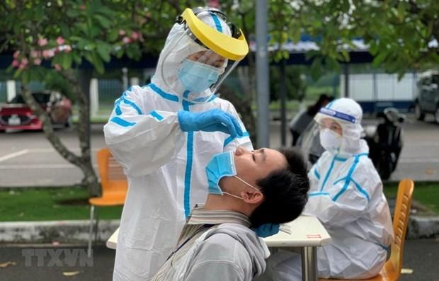 胡志明市呼吁旅外越南侨胞为该市新冠疫情防控工作献计献策 hinh anh 1